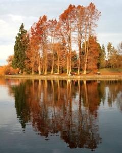 Green lake in the fall